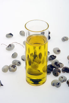 L'huile de baobab bio